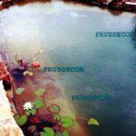 Биопруд для рыб в Подмосковье