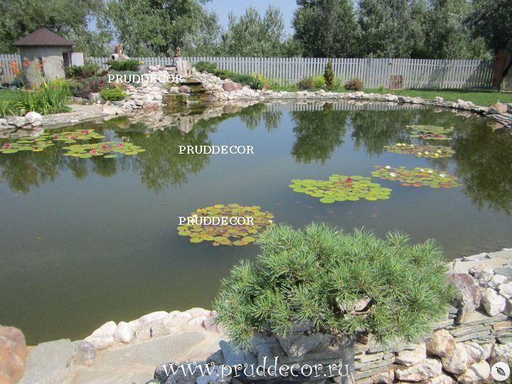 Цены на строительство прудов