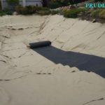 Искусственный пруд с пляжем в Подмосковье