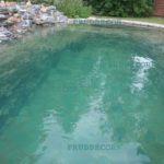 пруд для купания в Подмосковье