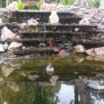 декоративные водоёмы с каскадами